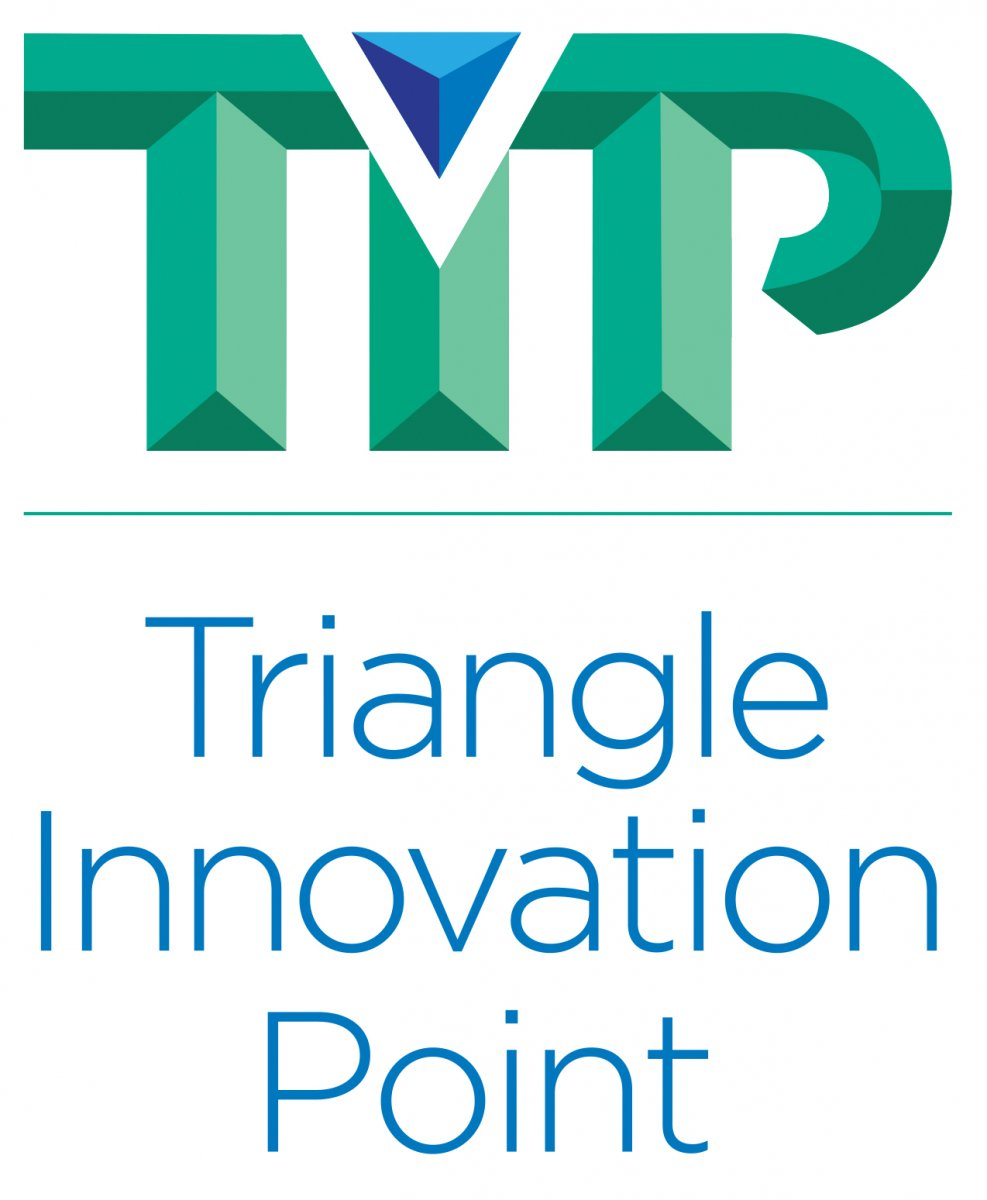 Tip Triangle Innovation Point